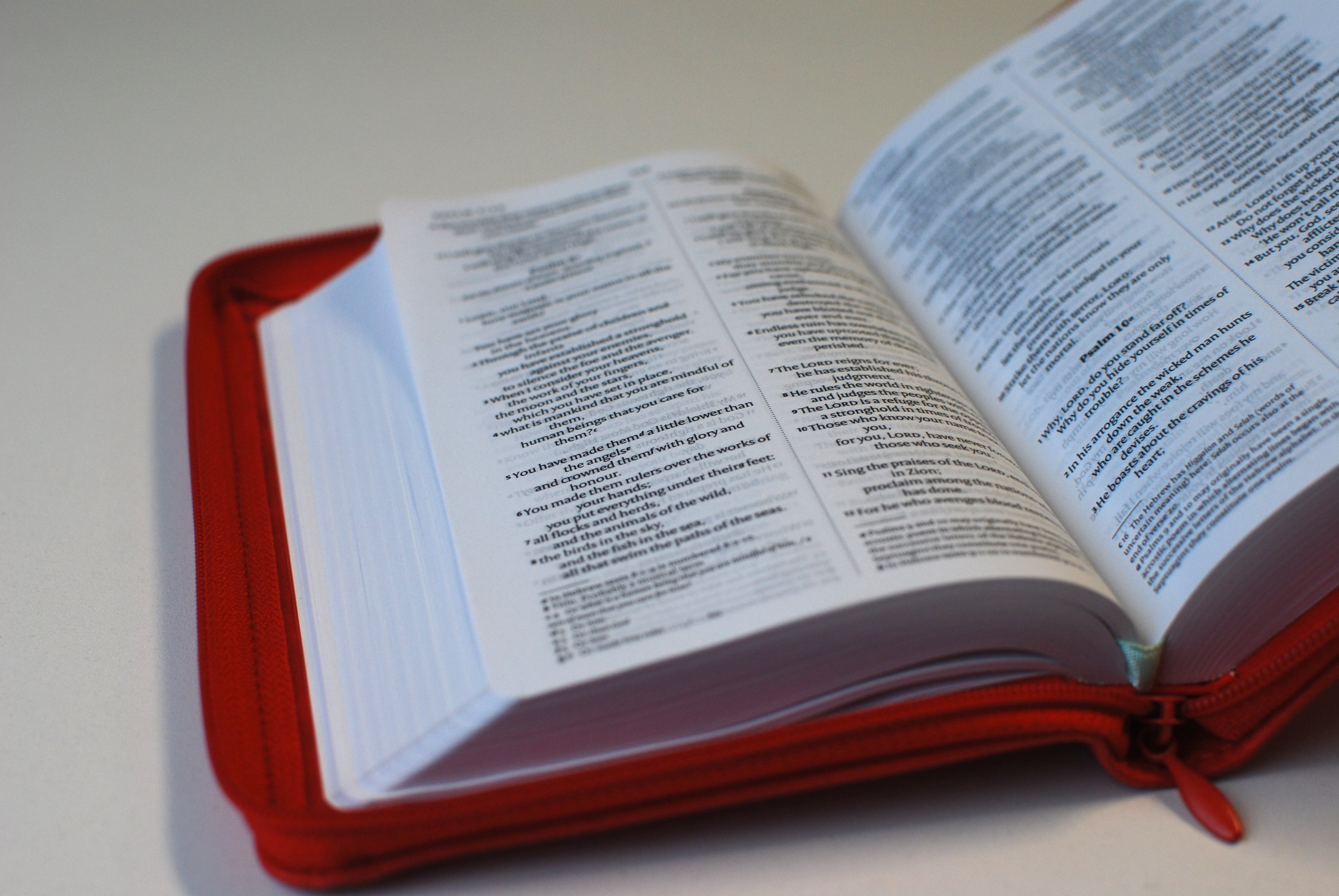 NIV Pocket Red Soft–Tone Bible with Zip